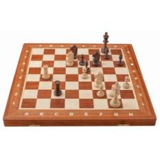 Светлые шахматы Турнир Вегель