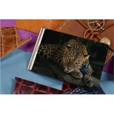 Зажим для денег Загадочный леопард