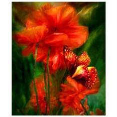 Картина-раскраска по номерам на холсте Бабочка на маке