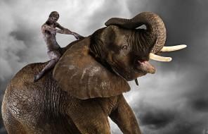 Подарочный сертификат Прогулка со слоном
