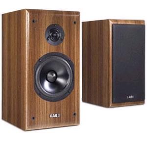 Acoustic Energy AEGIS NEO 1