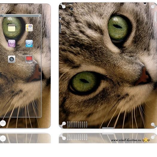23 (iPad2)