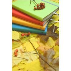 Ежедневник Vivien (цвет — зеленый)