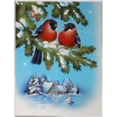 Картина Swarovski Морозко, 1019 кристаллов, 30х40