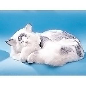 Кошка спящая