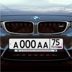 Рамка для номера «В машине молодожены»
