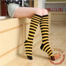 Черно-желтые полосатые гольфы короткие