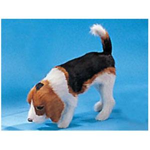 Модель «Собака Бигл»