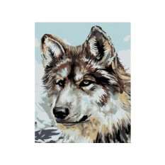 Картина по номерам «Серый волк» (мини-раскраска)