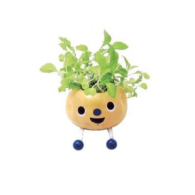 Набор для выращивания «Забавный базилик»
