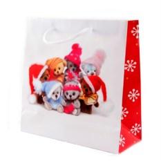 Бумажно-ламинированный пакет Новогодний (11х14 см)