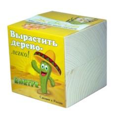 Эко куб для выращивания Кактус