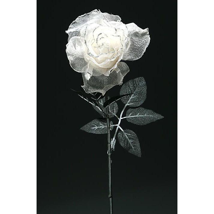 Роза шифоновая