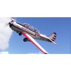 Полет на самолете Як-52 (15-20 мин.)