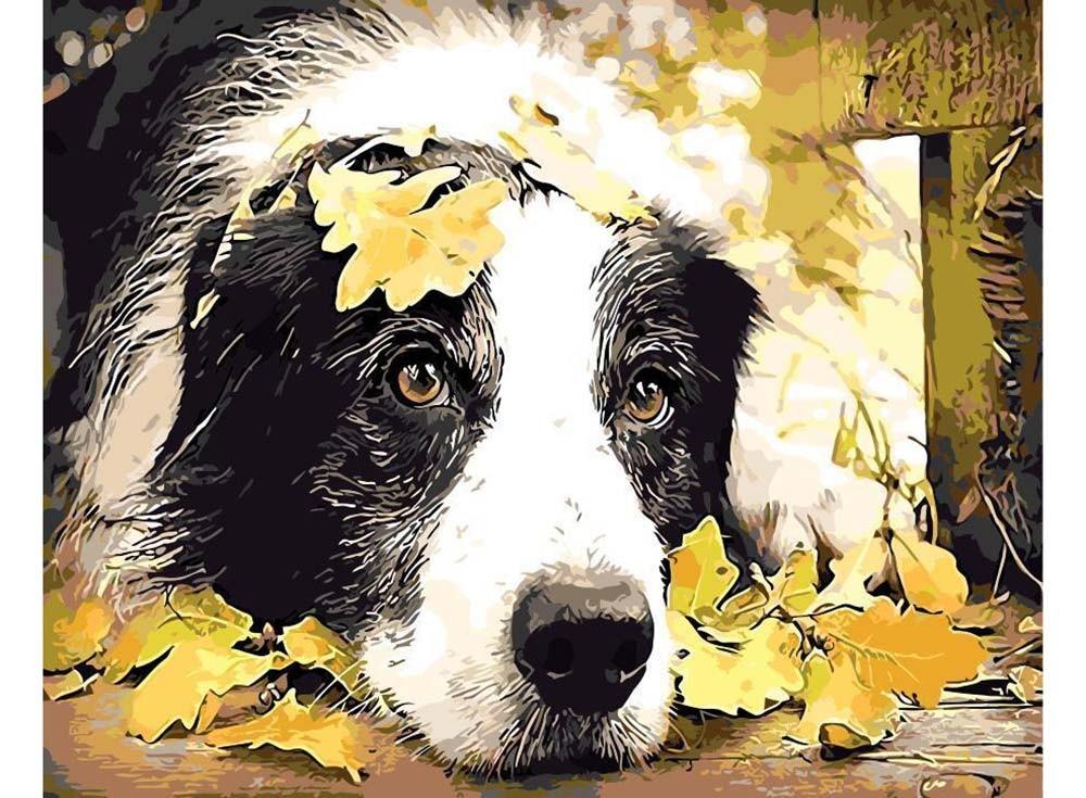 Картины по номерам «Вот и осень»