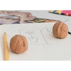 Ластик в виде грецкого ореха Walnut