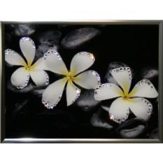 Картина с кристаллами Swarovski Белые цветы