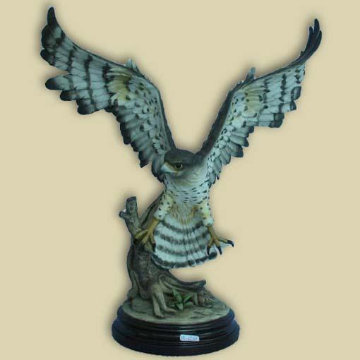 Сокол с раскрытыми крыльями