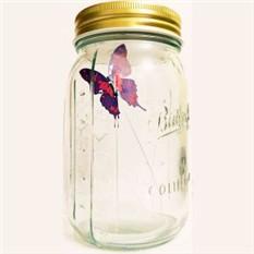 Электронная бабочка в банке  «Ночной парусник»