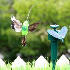 Порхающая колибри на солнечной батарее
