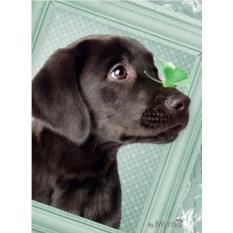 Пазл Ravensburger Счастливый щенок, 500 элементов
