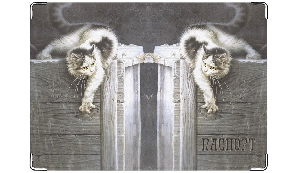 Обложка на паспорт Кошка-царапка