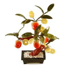 Бонсай «Персиковое дерево с монетами»