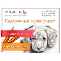 Подарочный сертификат «Карандаш с нуля»
