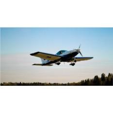 Ознакомительный полет на RokoAero NG4
