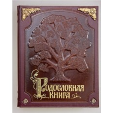 Родословная книга «С бронзовыми накладками»