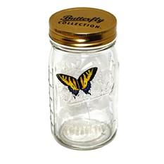 Бабочка в банке «Жёлтый махаон»