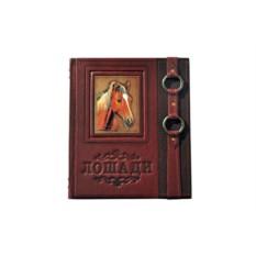 Подарочное издание «Лошади. Новая энциклопедия»