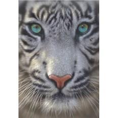 Пазл из 500 элементов Educa Белый тигр