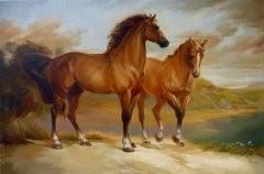 Раскраска по номерам на холсте Лошади