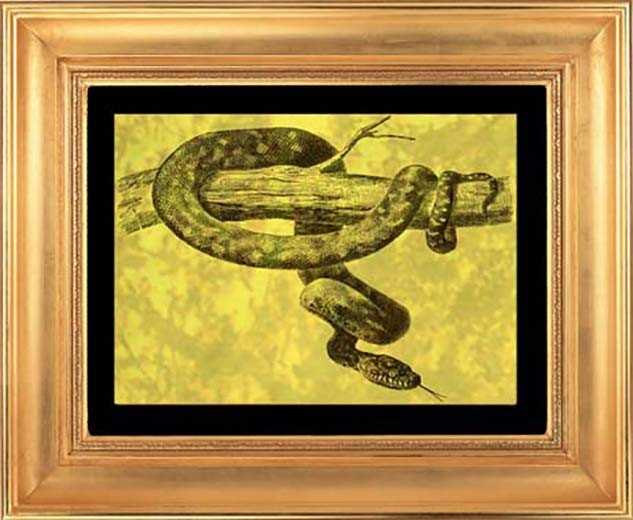 Гравюра из золота Удав