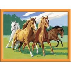 Раскраска по номерам Ravensburger Дикие лошади