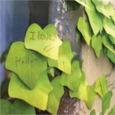 Красивые стикеры для заметок Листья