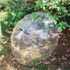 Прозрачный зонт Большой купол