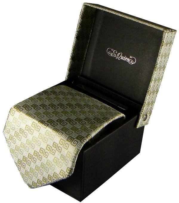 Набор из галстука и заколки S.Quire, бронзовый узор