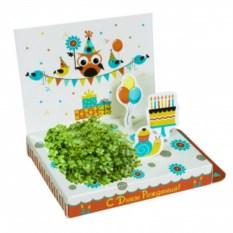 Живая открытка с совенком С днём рождения!