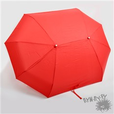 """Зонт складной для двоих """"Вдвоем веселее"""""""