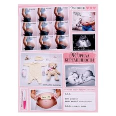 Папка для обменной карты Журнал беременности