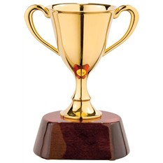 Награда «Кубок» малый