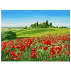 Картина-раскраска по номерам на холсте Маковое поле