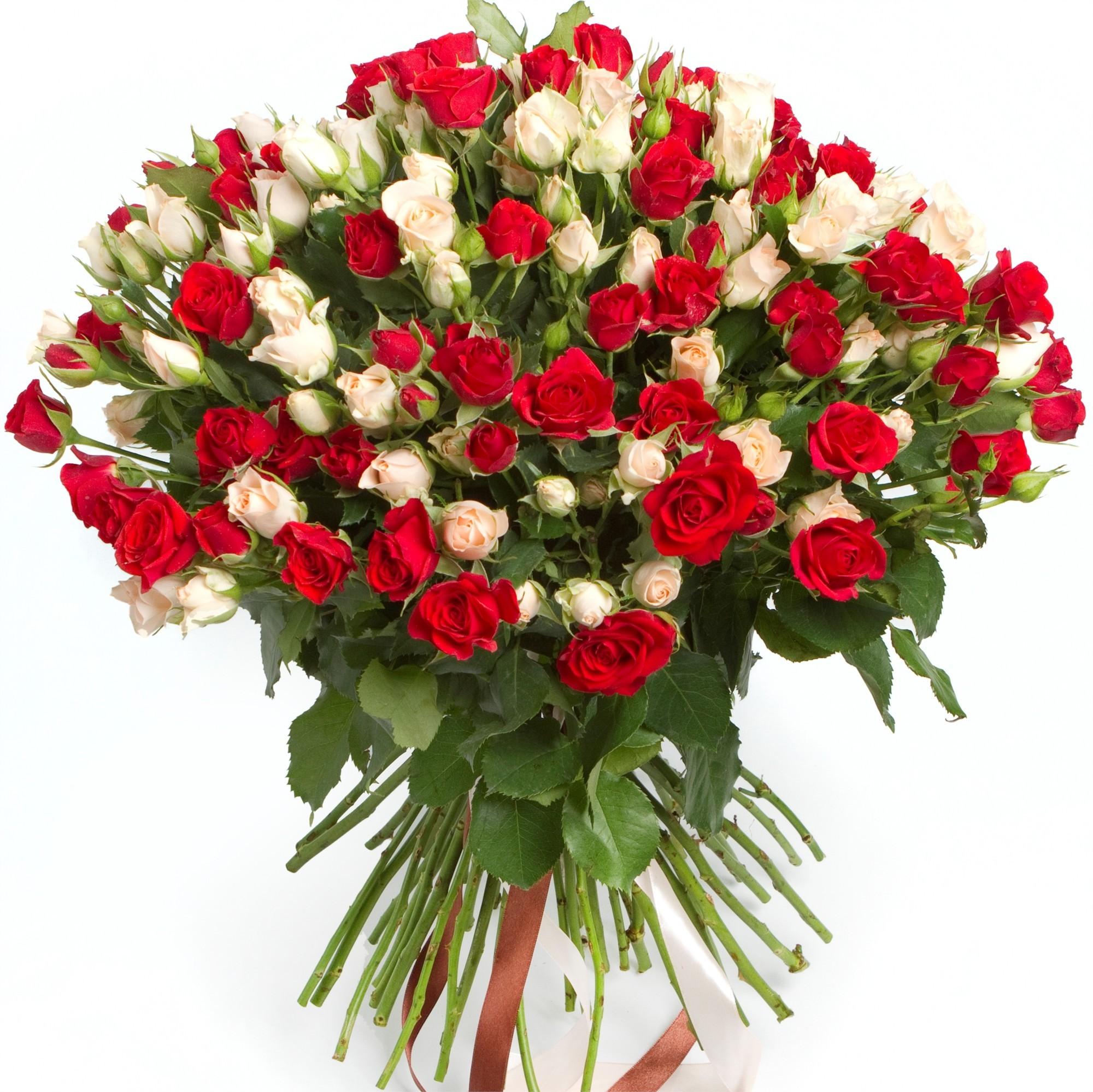Цветы в горшках для украшения свадьбы фото многие другие