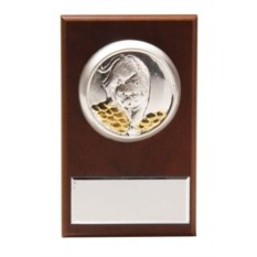 Малая плакетка Тигр на монетах