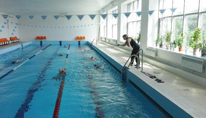 Занятия плаванием для взрослых в школе Start Swim