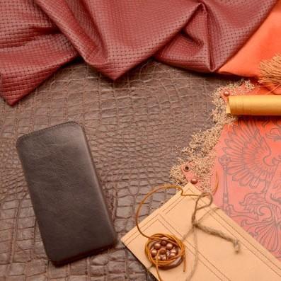 Кожаный чехол для iPhone 6 Plus «Вечерний Пантеон»