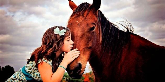 Сертификат Детский День рождения с конными прогулками