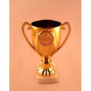 Кубок «Золотая Бабушка»